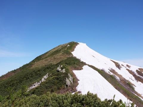 大日岳鞍部から大日岳頂上までの登山道。